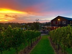 Third Hill at DeMello Vineyards