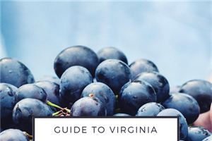 Organic Wineries in Virginia