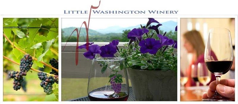 Little Washington Winery